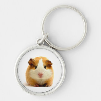 guinea pig Silver-Colored round key ring