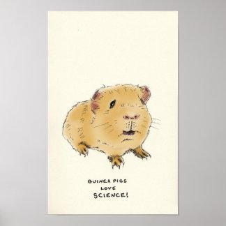 guinea pig trivia poster