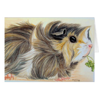 Guinea Pig with sprig Card