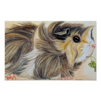 Guinea Pig With Sprig Poster