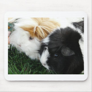 guinea pigs 2 mouse pad