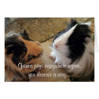 Guinea Pigs Birthday Greeting Card