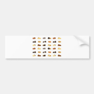 Guinea pigs bumper sticker