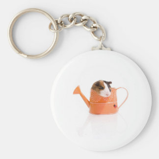 guinea pigs in has watering edge keychains