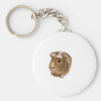 guinea pigs keychains