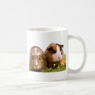 guinea pigs on a lawn tasse