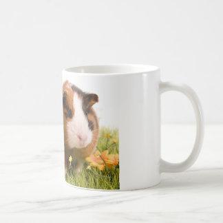 guinea pigs on a lawn tasse à café