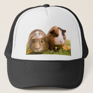 guinea pigs one has lawn trucker hat