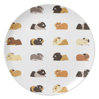 Guinea pigs party plate