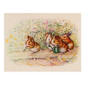 Guinea Pigs Planting in the Garden Postcard