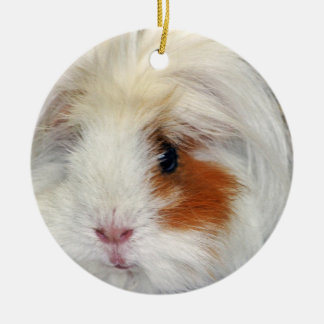 Guinea Pig's Wish Christmas Ornament
