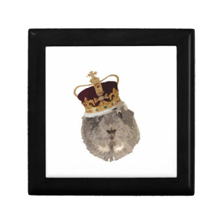 Guineapig in a crown gift box