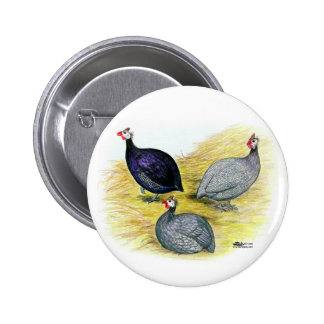 Guineas Purple, Coral Blue and Lavender 6 Cm Round Badge