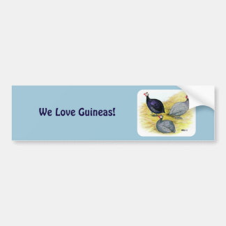 Guineas Purple, Coral Blue and Lavender Bumper Sticker