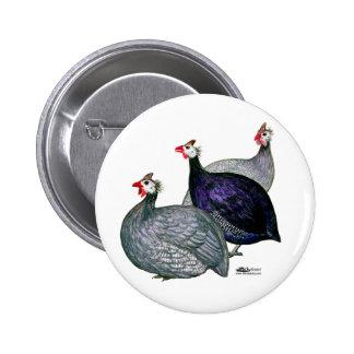 Guineas Three 6 Cm Round Badge