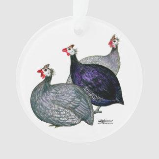 Guineas Three Ornament