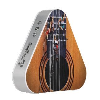 Guitar Climbers Pieladium Speaker