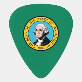 Guitar pick with Flag of Washington State