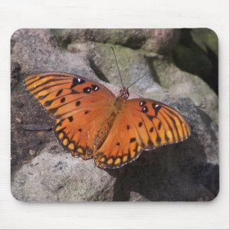 gulf fritillary 2 butterfly mouse pad