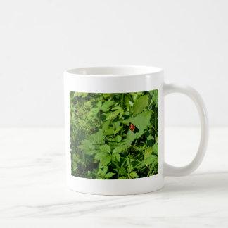 Gulf Fritillary Butterfly-13 Coffee Mug