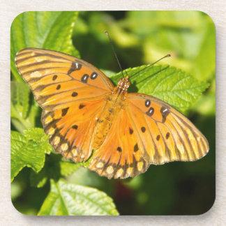 Gulf Fritillary Butterfly Coaster