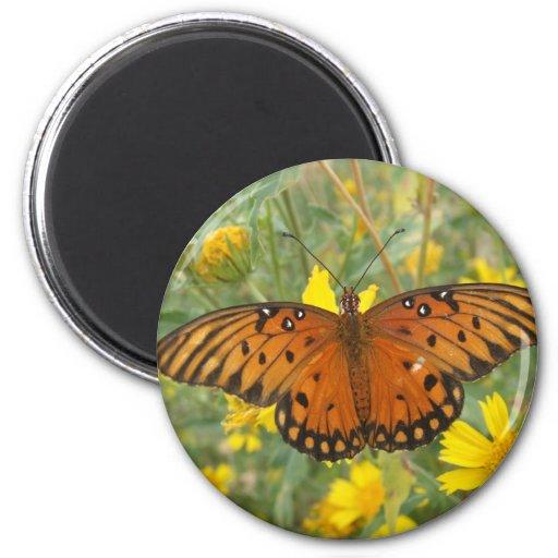 Gulf Fritillary Butterfly Fridge Magnet