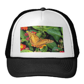 Gulf fritillary butterfly, Mexico  flowers Mesh Hat