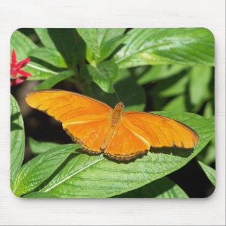 gulf fritillary butterfly mouse mat