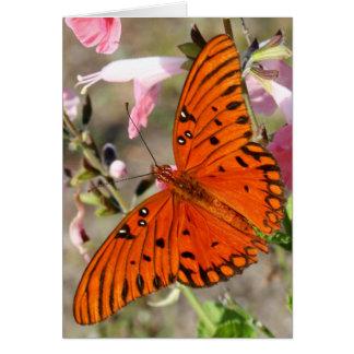 Gulf Fritillary Butterfly Notecard Greeting Card
