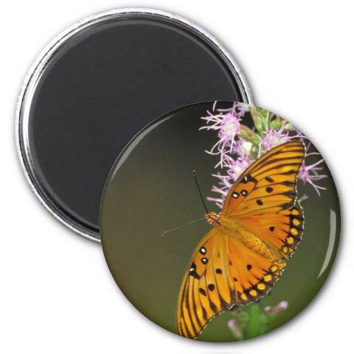 Gulf Fritillary butterfly on Dense Blazingstar Fridge Magnets