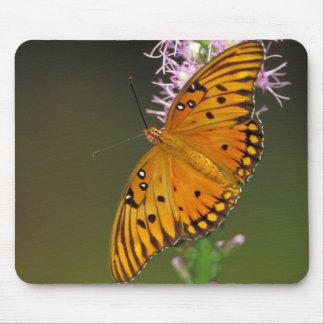 Gulf Fritillary butterfly on Dense Blazingstar Mousepad