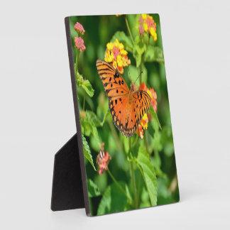 Gulf Fritillary Butterfly Photo Plaque
