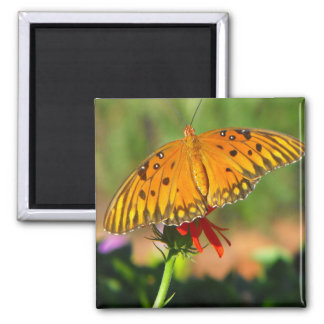 Gulf Fritillary Butterfly Upclose Fridge Magnet