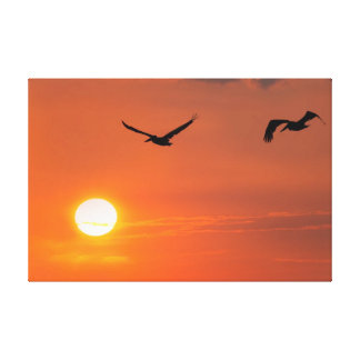 Gulf of Mexico Pelican Sunset Stretched Canvas Print