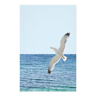 Gull flying above a sea flyer