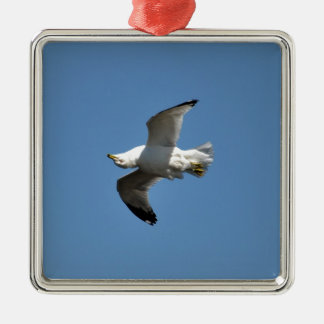 Gull Flying Upside Down Funny Wildlife Photography Silver-Colored Square Decoration