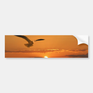 Gull In The Sunset Bumper Sticker