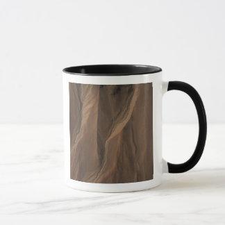 Gullies at the Edge of Hale Crater, Mars Mug