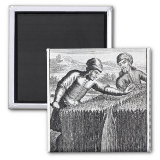 Gulliver is discovered by a farmer in square magnet