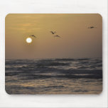 Gulls and Sunset on Texas Coast Mouse Pad