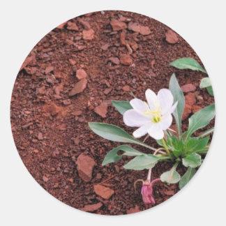 Gumbo Lily Round Sticker