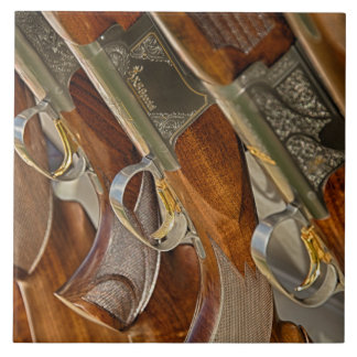 Gun Collection Display Tile
