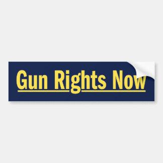 Gun Rights Now Bumper Sticker