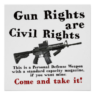 Gun Rights Posters