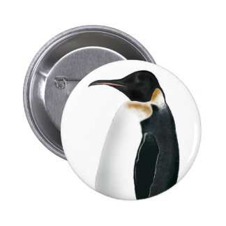 Gunter the Penguin Pinback Button
