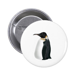 Gunter the Penguin Pinback Buttons