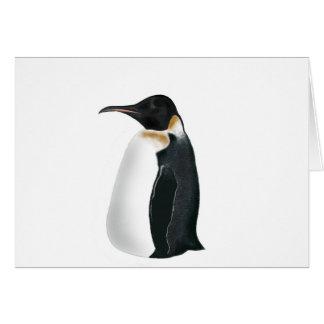 Gunter the Penguin Greeting Card