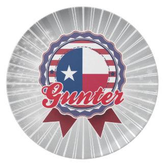 Gunter, TX Dinner Plate
