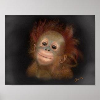 Gunung Baby Orangutan Poster