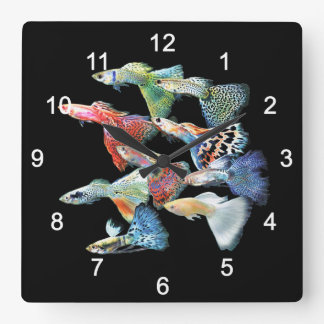 Guppies Square Wall Clock